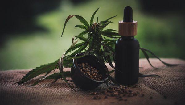 Les bienfaits du cannabis légal